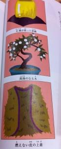 'jaket kulit yang tidak mempan dibakar', 'Mangkok yang digunakan oleh Buddha', 'pohon yang berbuah mutiara'
