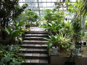 Botanical Garden Green House
